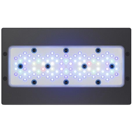 radion xr30w g5 blue lampada led 205w